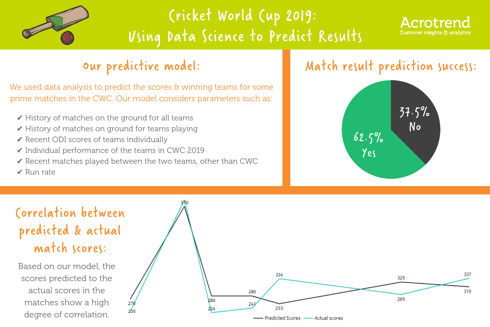 Cricket World Cup Summary Infographic