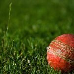 photo of cricket ball